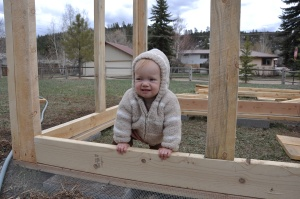 Supervising construction of the coop.