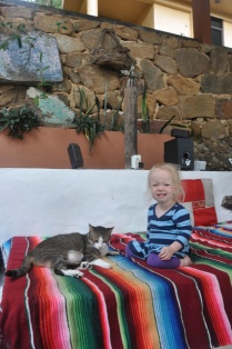 Mia loves Lola, one of the house cats