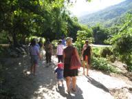Herbal walk up river