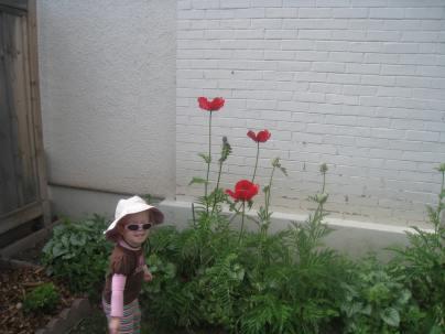 Admiring the flowers.