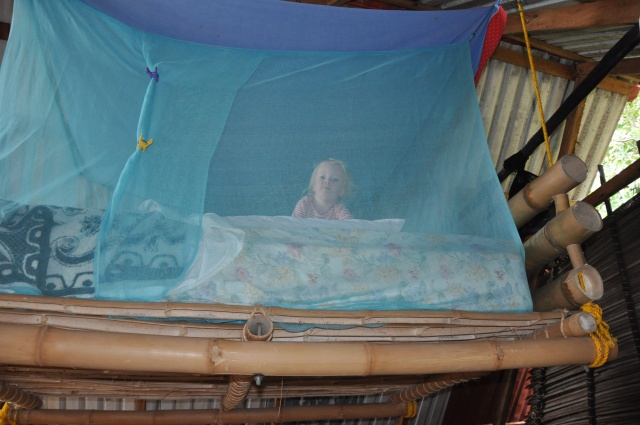 Hanging bed with mosquito net