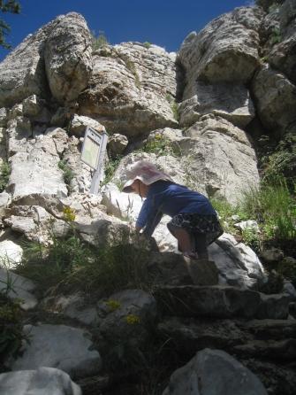 Climbing girl
