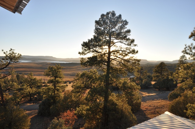 Lake house view