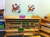 Junior Elementary