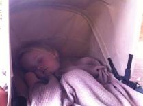 Comfy nap spot for Miss M.