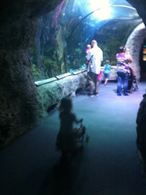 Pushing her baby & stroller through the aquarium
