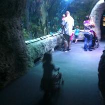 Pushing her baby & stroller through the aquarium