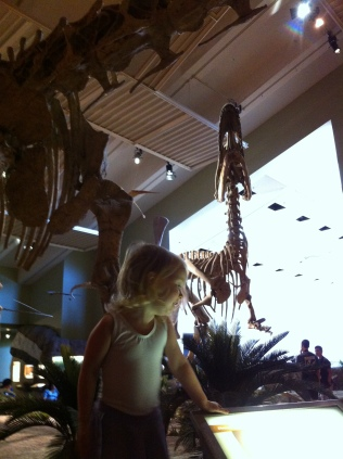 Yes, of course, paleontologists can wear leotards and ballet skirts!