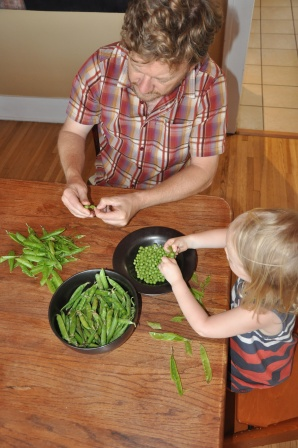 Shelling peas from our friends' garden