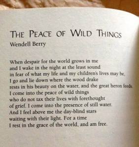 The Peace of Wild Things by Wendell Berry